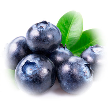 Blueberries have been used for centuries for it's tasty juicy and healthy properties