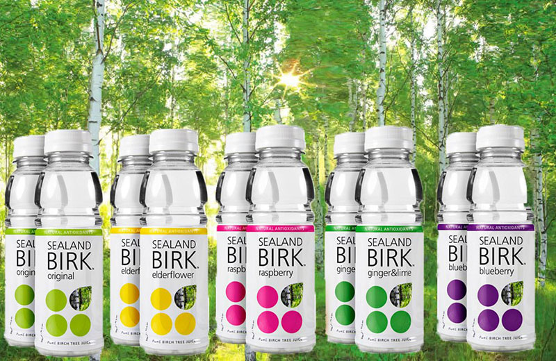 Sealand BIRK - Drink your water straight from the birch tree